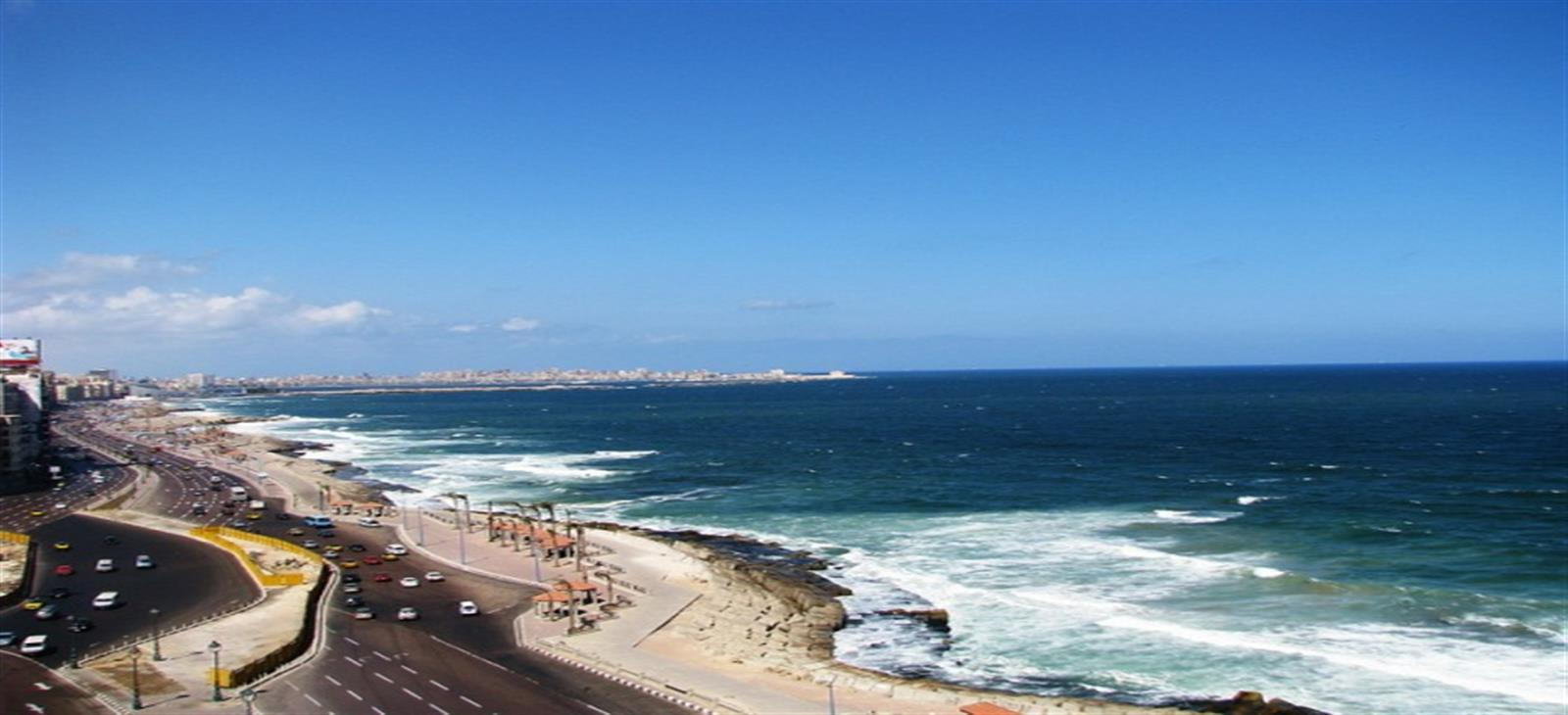 Day tours to Alexandria
