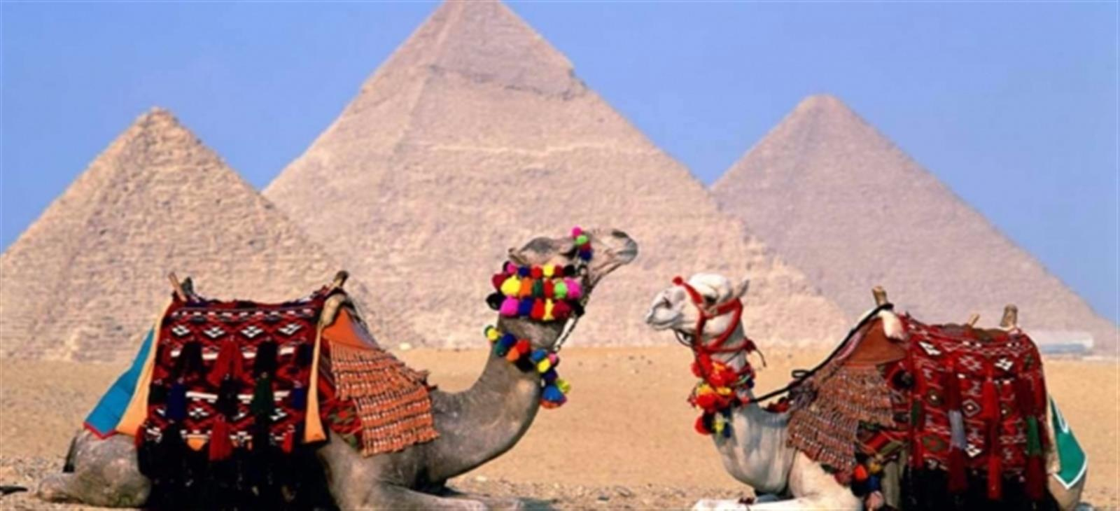 tours from luxor to cairo