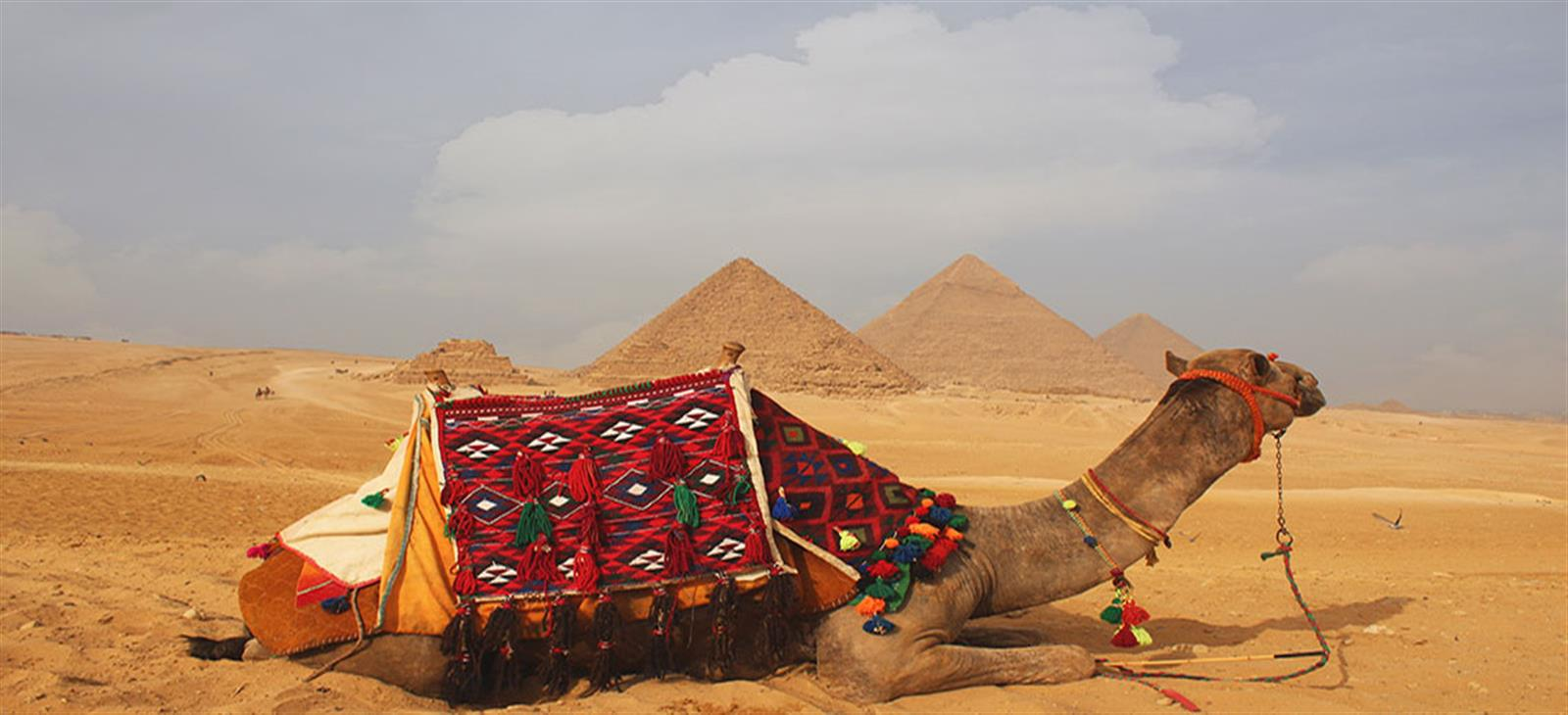 travel package to egypt 14 days
